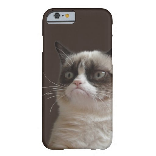 Éclat grincheux de chat coque iPhone 6 barely there