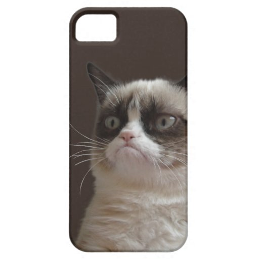 Éclat grincheux de chat coque Case-Mate iPhone 5