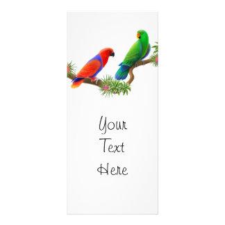 Eclectus Birds Rack Card