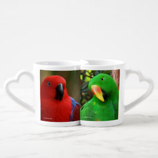 Eclectus Parrots Coffee Mug Set