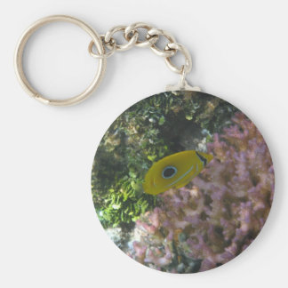 Eclipse Butterfly Fish Swimming By Coral Basic Round Button Keychain