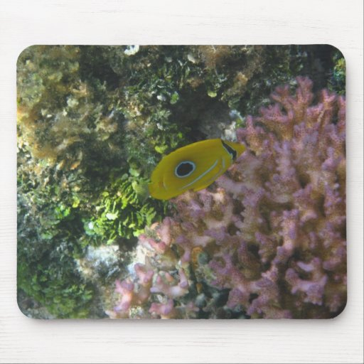 Eclipse Butterfly Fish Swimming By Coral Mousepad