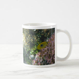Eclipse Butterfly Fish Swimming By Coral Mugs