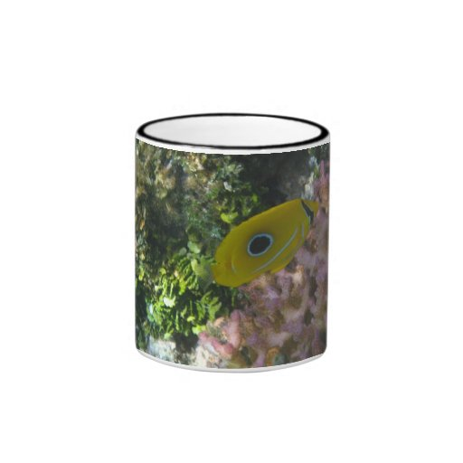 Eclipse Butterfly Fish Swimming By Coral Coffee Mugs