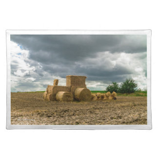 ECO FARMING - Placemat