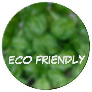Eco friendly porcelain plate