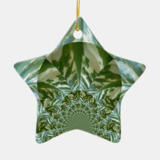 Eco - Going Green Environmental Friendly Colors Ceramic Star Ornament