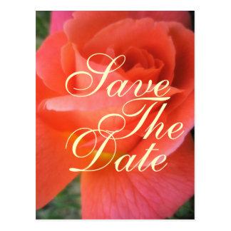 Économies de rose d'été le faire-part de mariage carte postale