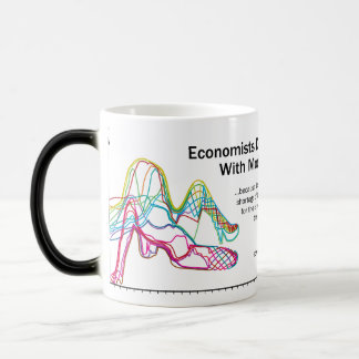 Economists Do It With Models Color Change Mug