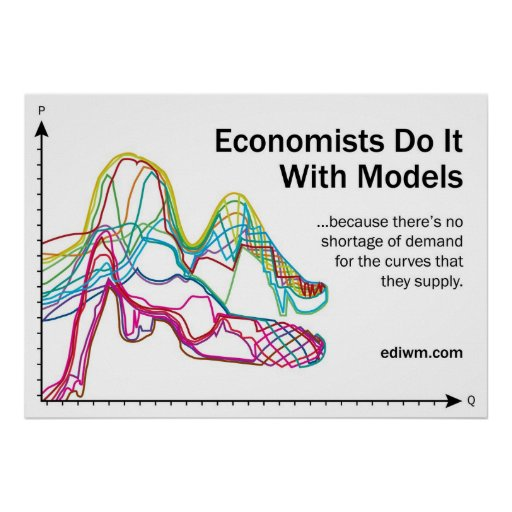 Economists Do It With Models Slogan Poster