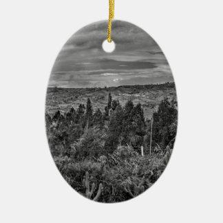 Ecuador Landscape Scene at Andes Range Ceramic Oval Ornament