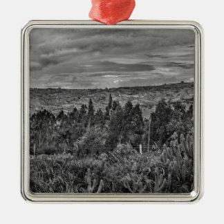 Ecuador Landscape Scene at Andes Range Silver-Colored Square Ornament