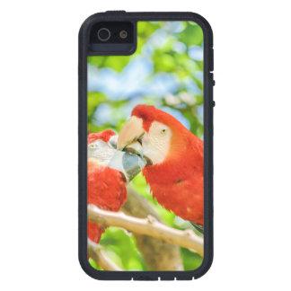 Ecuadorian Parrots at Zoo, Guayaquil, Ecuador Case For The iPhone 5