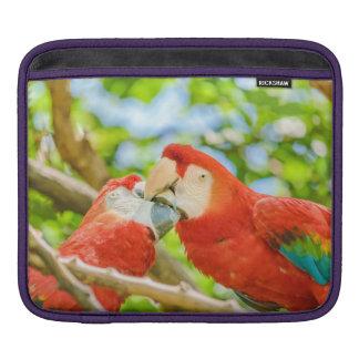 Ecuadorian Parrots at Zoo, Guayaquil, Ecuador iPad Sleeve