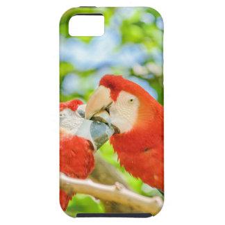 Ecuadorian Parrots at Zoo, Guayaquil, Ecuador iPhone 5 Case