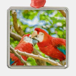 Ecuadorian Parrots at Zoo, Guayaquil, Ecuador Metal Ornament
