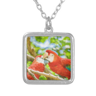 Ecuadorian Parrots at Zoo, Guayaquil, Ecuador Silver Plated Necklace