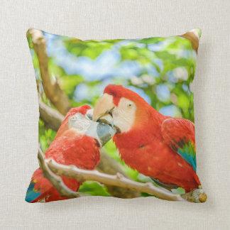 Ecuadorian Parrots at Zoo, Guayaquil, Ecuador Throw Pillow