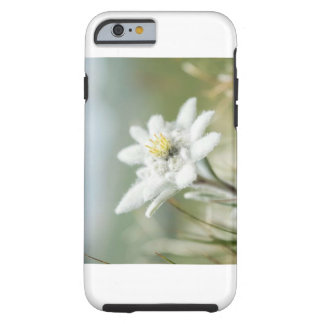 Edelweis Flower Tough iPhone 6 Case