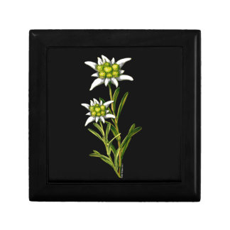 Edelweiss Floral Tile Box