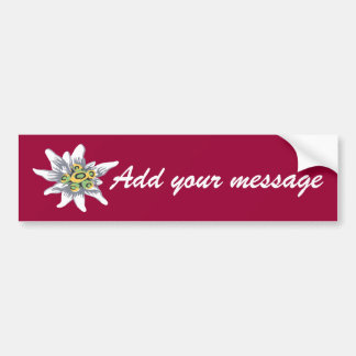 Edelweiss flower bumper stickers