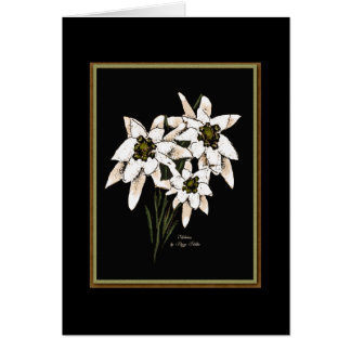 Edelweiss Flowers Card