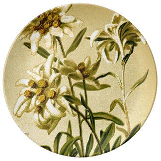 Edelweiss Plate