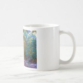 Eden Sunset Classic White Coffee Mug