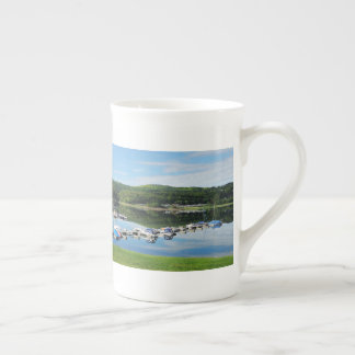 Edersee bay with separate tea cup