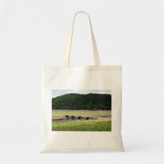 Edersee bridge of Asel Tote Bag