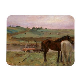 Edgar Degas - Horses in a Meadow Magnet