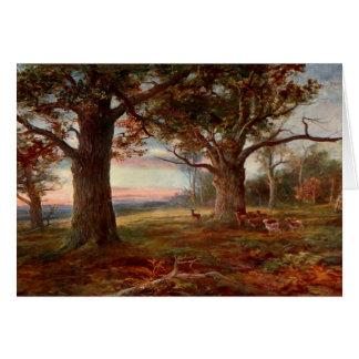 Edge of Sherwood Forest Card