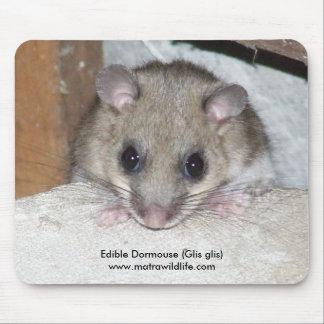 """Edible Dormouse"" Mousepad"