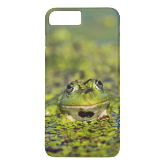 Edible Frog in the Danube Delta iPhone 7 Plus Case