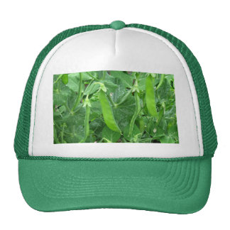 Edible Peas Ready to Eat - photograph Trucker Hat