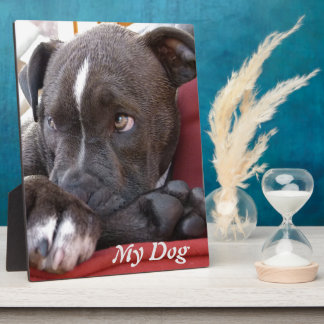Editable Baby Pitbull Puppies Plaque