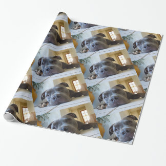 Editable Brown Pitbull Dog Wrapping Paper