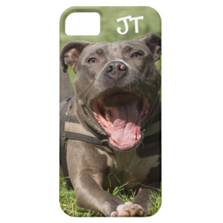 Editable Brown Pitbull In Grass Case For The iPhone 5