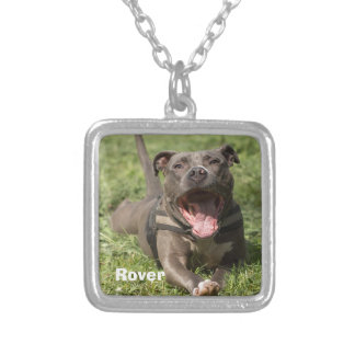 Editable Brown Pitbull In Grass Silver Plated Necklace