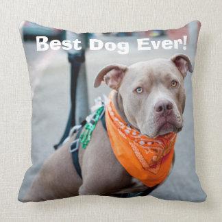 Editable Dog with Bandana Throw Pillow