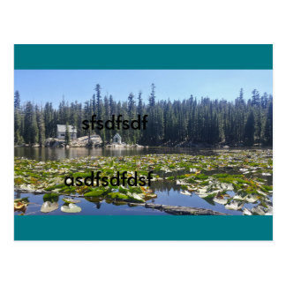 editeditedit postcard