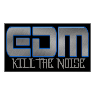 EDM KILL THE NOISE POSTER