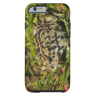 edmonton, alberta, canada 2 tough iPhone 6 case