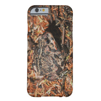 edmonton, alberta, canada 3 barely there iPhone 6 case