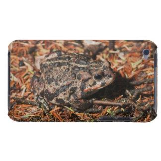 edmonton, alberta, canada 3 barely there iPod case