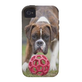 edmonton alberta canada vibe iPhone 4 cases