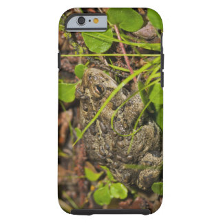 edmonton, alberta, canada tough iPhone 6 case