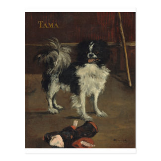 Edouard Manet- Tama the Japanese Dog postcard