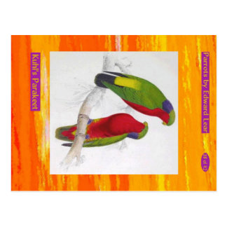 Edward Lear. Kuhl's Parakeet. Postcard
