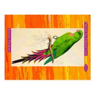 Edward Lear. Roseate Parakeet. Postcard